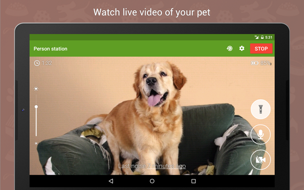 The Best Pet Monitoring Cameras for Your Home